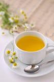 4 chamomile Στοκ Φωτογραφίες