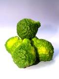 4 citrusfrukter Royaltyfria Bilder