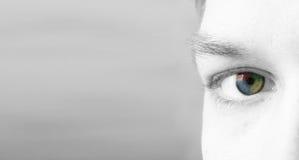 4 colorise Auge (es) vektor abbildung