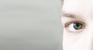4 colorise Auge (es) Lizenzfreies Stockbild