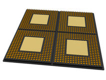 4 Core CPU Processor Royalty Free Stock Images