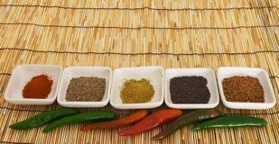 4 currykryddor Royaltyfria Foton