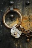 4 dörrar säkrar trä Arkivfoton