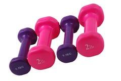 4 dumbbells free hand weights Στοκ Φωτογραφία