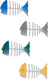 4 Fish Heads. 4 different colored fish heads with skeletons. No background for easy usability Stock Photos