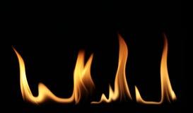 4 flammor royaltyfria bilder