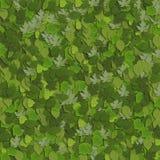 4 gröna leaves Royaltyfria Bilder