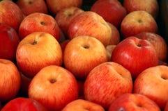 4 jabłko Fotografia Royalty Free