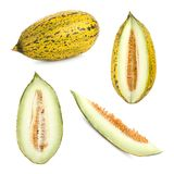 4 klippte olika prickiga melonformer Royaltyfri Foto