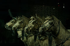 4 krigare xian Royaltyfri Fotografi