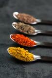 4 kryddor på skedar Royaltyfri Bild