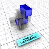 4-kwaliteit beheer (4/6) Royalty-vrije Stock Foto