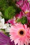 4 kwiat Zdjęcia Stock