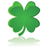 4-leaf clover. Glossy illustration showing a four leaf clover reflected on a white surface Royalty Free Stock Image