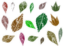 4 leaves stock illustrationer