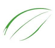 4 liści, ilustracja wektor