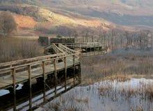 4 Loch Lomond 免版税库存图片