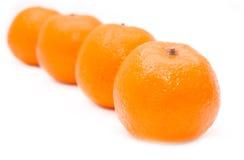 4 Mandarin Oranges Stock Images