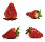 4 morangos do tamanho e da forma diferentes Imagens de Stock Royalty Free