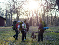 4 Mountaineers With Brown and White American Pit Bull Terrier Under Tall Bare Trees Stock Image