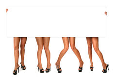 4 Pairs of Legs. Blank Message Sign Held by Hands With 4 Sets of Long Ladie's Legs Royalty Free Stock Photos