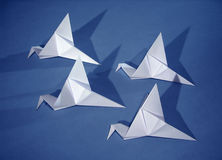 4 paper birds. Four origami paper birds on blue stock image