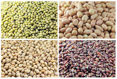 4 peas Stock Images