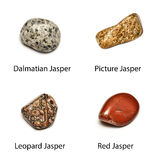 4 polished jasper Stock Photography