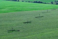 4 powietrze krajobraz Zdjęcie Royalty Free