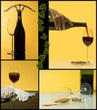 4 punti di vino Fotografia Stock Libera da Diritti