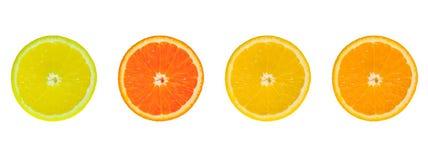 4 rebanadas de fruta cítrica Foto de archivo