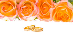 4 Red yellow roses and wedding ring over white Royalty Free Stock Photo