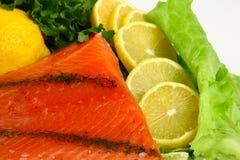4 ryba Fotografia Stock
