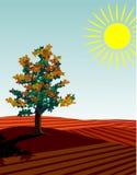 4 seasons: autumn. Four seasons: autumn a single tree standing in the fields stock illustration