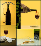 4 steps of wine Royalty Free Stock Photo