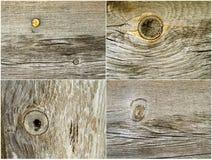 4 tekstur drewna Obrazy Royalty Free