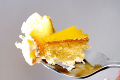 4 tortów pustynia Zdjęcia Stock