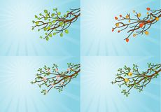 4 tree branches Royalty Free Stock Photos