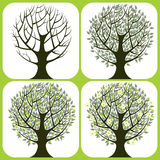 4 trees. Icons - vector illustration Stock Images