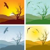 4 versies van landschap Stock Fotografie