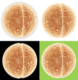 4 Versions of Cell Dividing. 4 images of cell dividing in two against white background, white background with shadow, black background, and green background Royalty Free Stock Photography
