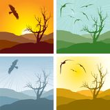 4 versions of landscape. Set of four illustrations of a landscape and leafless tree representing different seasons. Also available vector Stock Photography