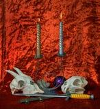 4 świeczki czaszki Zdjęcie Royalty Free