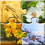 4 year season in one puzzle. Ecology concept design Royalty Free Stock Photo