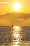 4 żyje oceanu obrazy royalty free