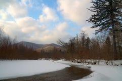 4 zima krajobrazowy drewno Obraz Royalty Free