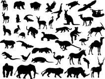 4 zwierzęcia. ilustracja wektor