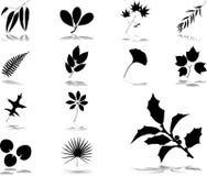40 установленных листьев икон иллюстрация вектора