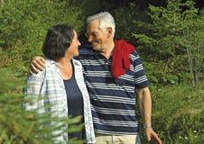 40 anni di amore 6 Immagine Stock