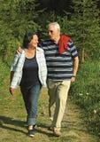 40 anos de amor 7 Imagem de Stock Royalty Free